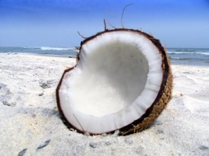 Coconut on Beach